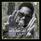 Felix da Housecat